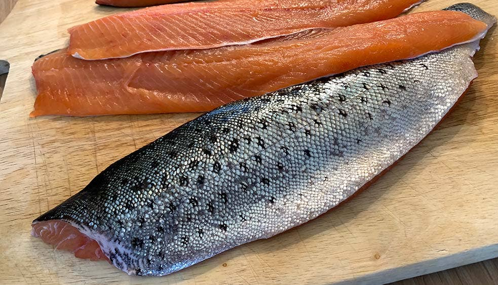 Freshly filleted trout ready for curing