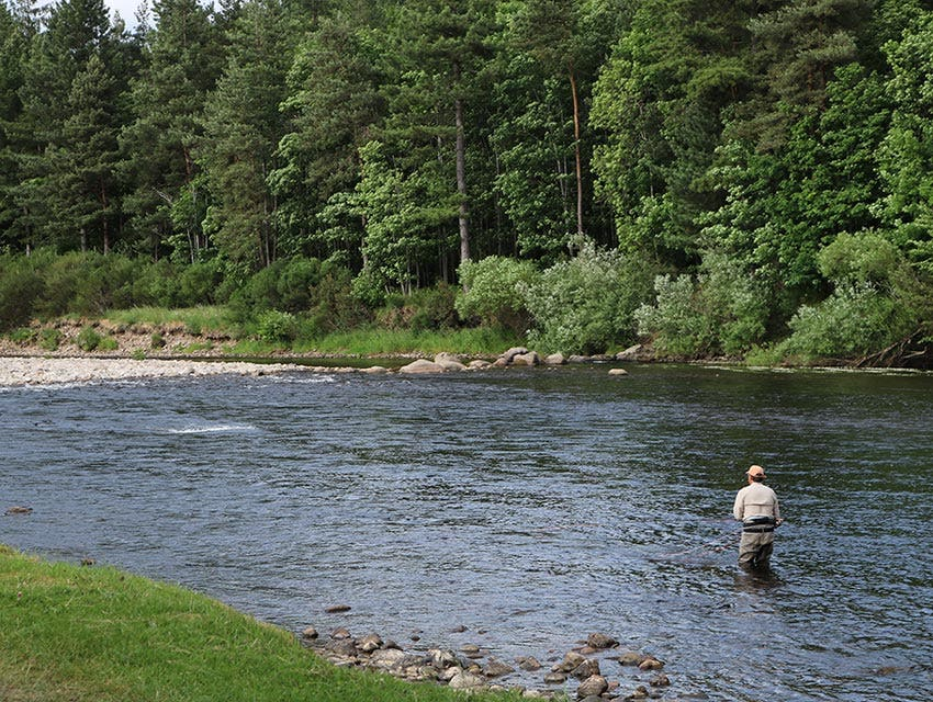 How to fish a salmon pool