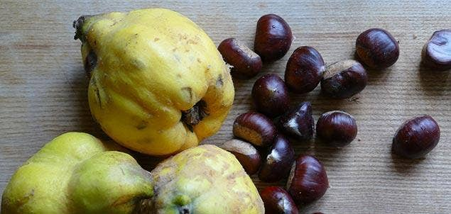 Annies Quince and chestnuts