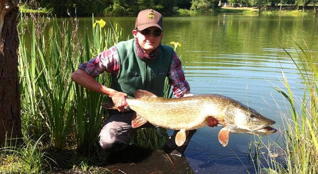 Trout Fisherman Article