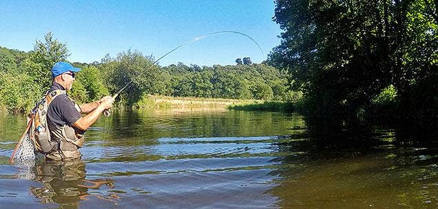 Nick's Daytime Sea Trout Fishing Guide