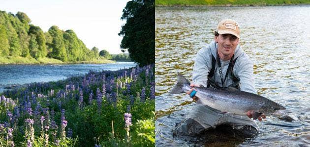 Post-Lockdown Salmon Fishing on the River Tay