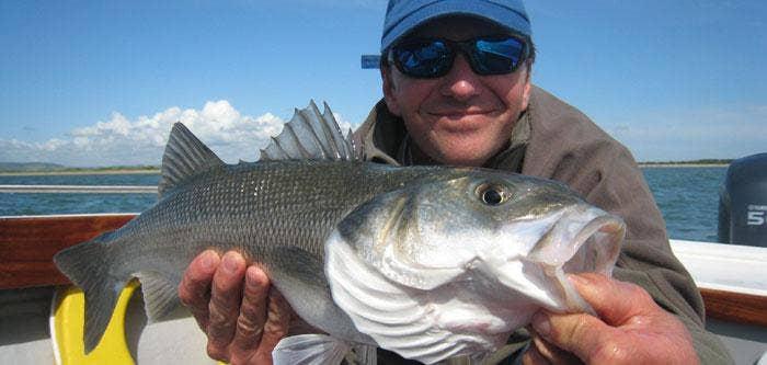Salty Dog Bass Fishing