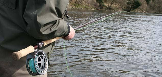 Autumn Salmon Fishing