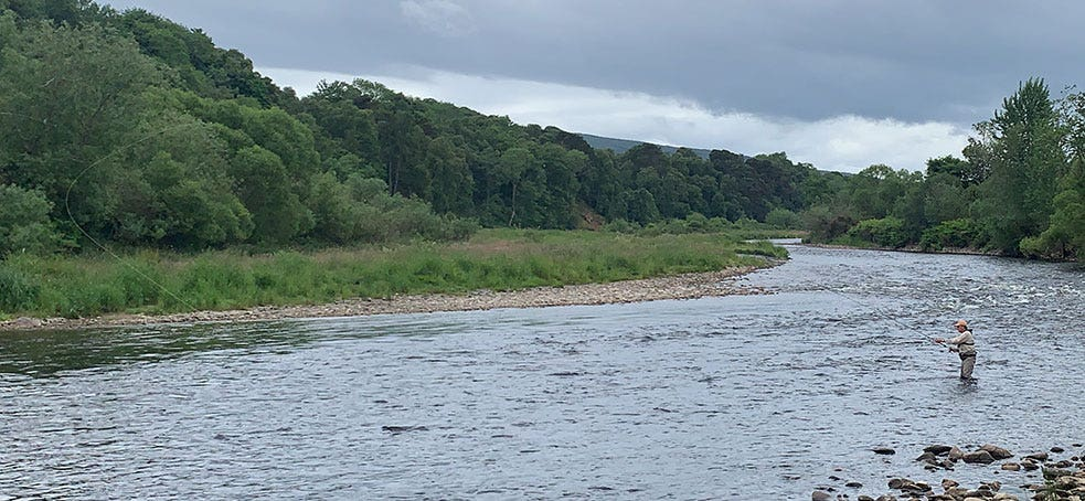 Summer salmon fishing casting and movement