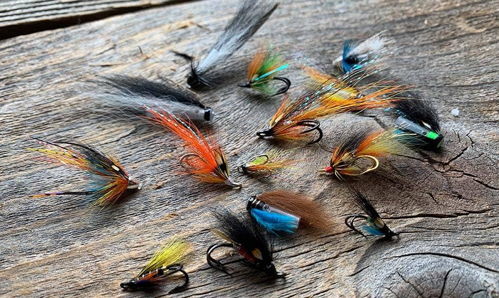 Summer salmon fly choice
