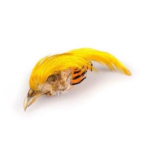 Veniards Golden Pheasant Complete Crest
