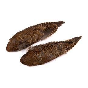 Veniards Woodcock Wings (Pair)