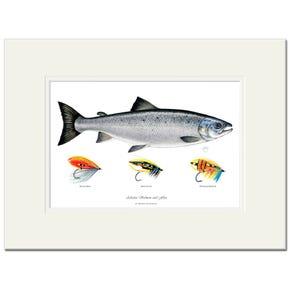 Atlantic Salmon & Flies Signed Fine Art Print by Maria Gonzalez