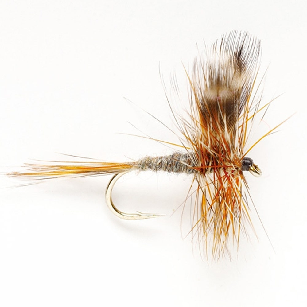 Product Image Winged Dry Adams