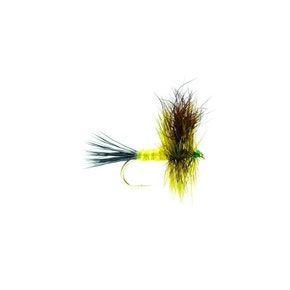 Special Dry Wulff Green Drake