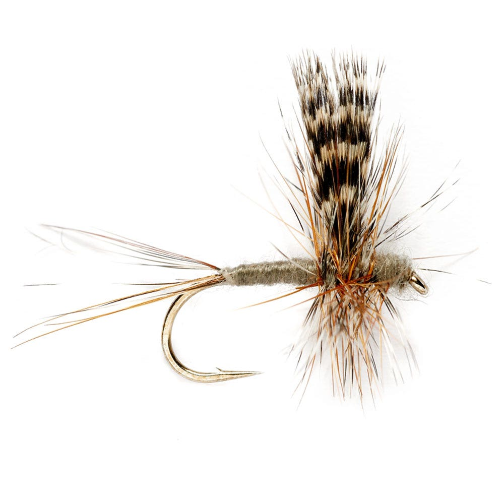 Product Image Adams Thorax Dry Fly