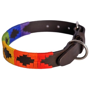 Pioneros Rainbow Dog Collar