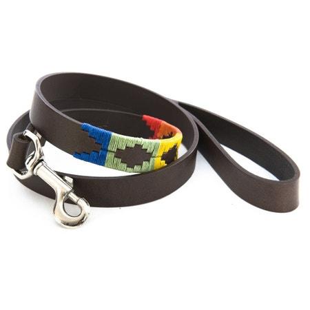 Pioneros Rainbow Dog Lead