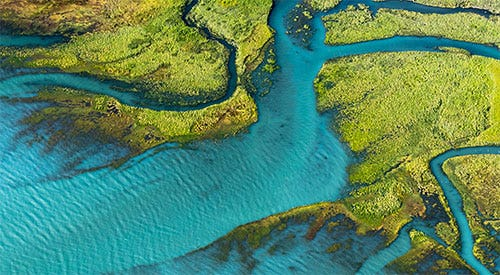 Read more about Patagonia's Environmental responsibility