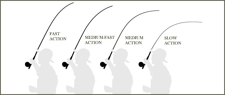 Fly rod actions