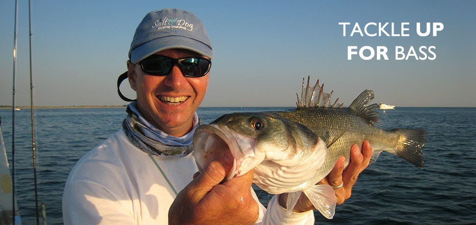 Tackle and Clothing for Summer Bass Fishing