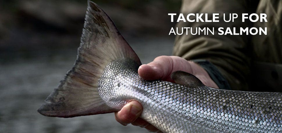 Tackle Up for Autumn Salmon