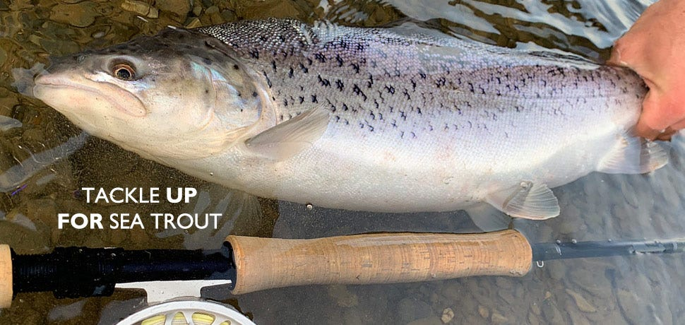Tackle and Clothing for Summer Sea Trout Fishing