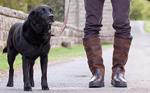 Mens Country Footwear and Boots