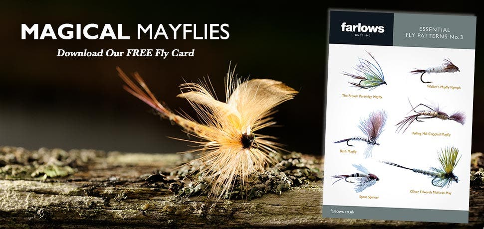 Magical Mayflies - Essential Fly Patterns