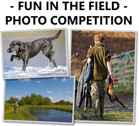 Farlows Fun in the Field Photo Competition